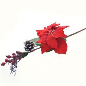 Ramo flor azevinho pinhas